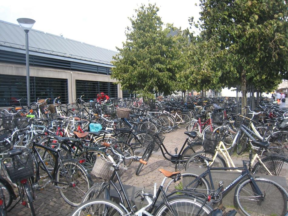Миллионы велосипедов. Везде!